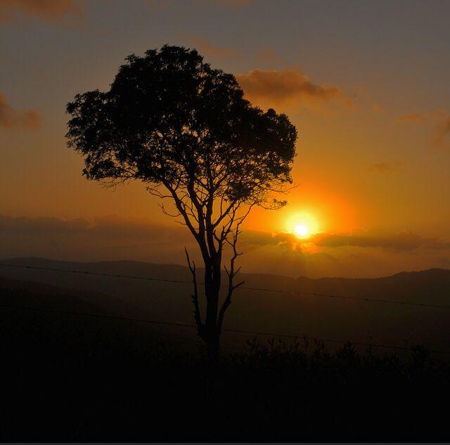 Beechmont Sunrise, Gold Coast  #VisitGoldCoast #ThisIsQueensland #SeeAustralia