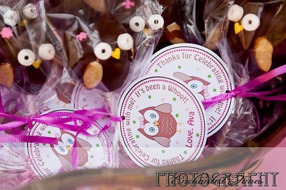 Woodsy Owl FAVOR TAGS Stickers  DIY Printable Party  by 10candles, $6.00