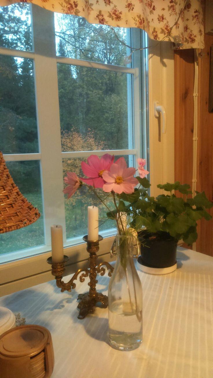 Syksy saapuu, kesän viimeiset kukat