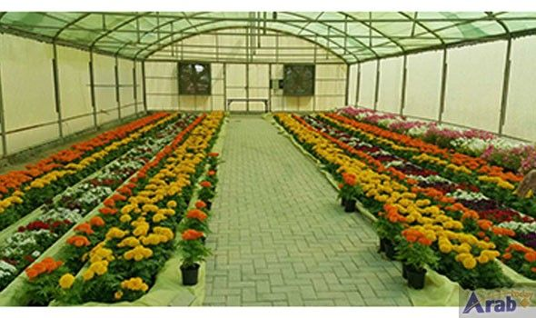 Flower show to open