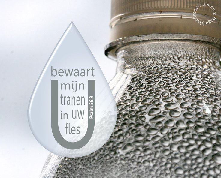 U bewaart mijn tranen in Uw fles. Psalm 56:9 #Bemoediging, #God http://www.dagelijksebroodkruimels.nl/psalm-56-9/