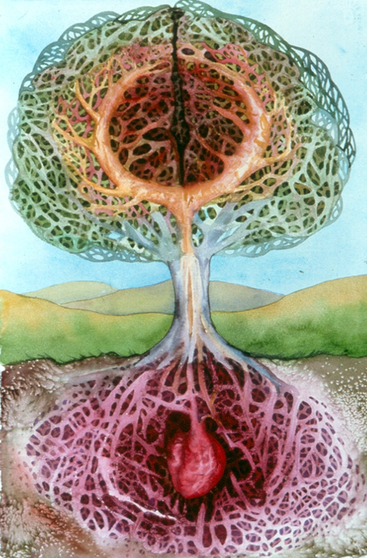 285 best Tree of Life images on Pinterest | Tree of life, Sacred ...