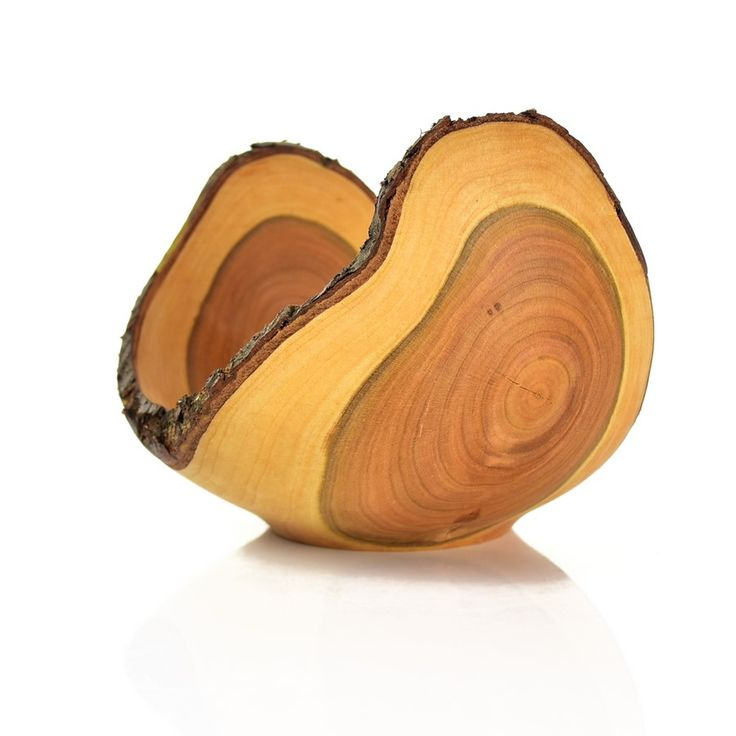 #Naturaledge #birdcherry #bowl / Miska z czeremchy z korą   #toczenie #toczeniewdrewnie #woodworking #woodturning #wooddesign #drechseln #handcraft #woodenbowl #woodshop #woodart #wood #drewno #zdrewna #drewnianeprzedmioty #misy #miska #misyzdrewna #czeremcha #kora #recznierobione #rękodzieło #handmade #donitza #homedecor #interiordesign #dekoracja