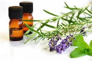 Iridology Herbs for Health: How is Essential Oil Distilled?