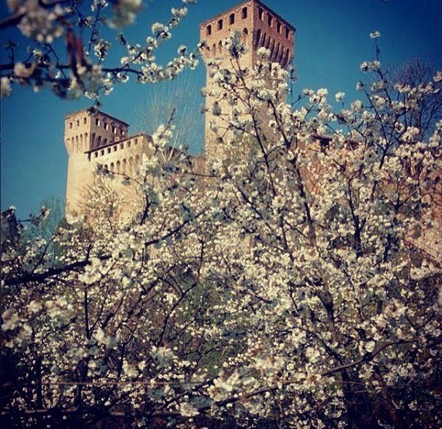 Vignola in fiore - castello