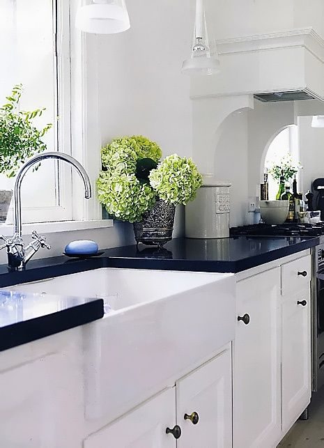 white kitchen with black counters & pops of green