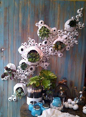 An interesting way to display succulents inside giant barnacles attached to a board.  These are on display at an Anthropologie store