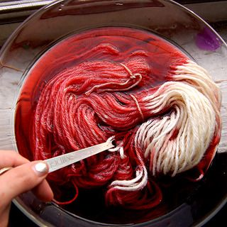 Dye wool with food coloring: