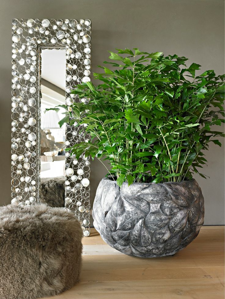 20 best images about planters for life collection on for Modern indoor plants