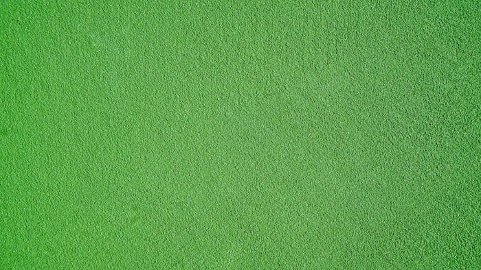 Green Wallpapers Free Hd Download 500 Hq Unsplash Green Wallpaper Green Pictures Leaf Photography