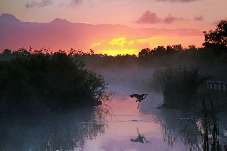 Florida National Parks Roadtrip