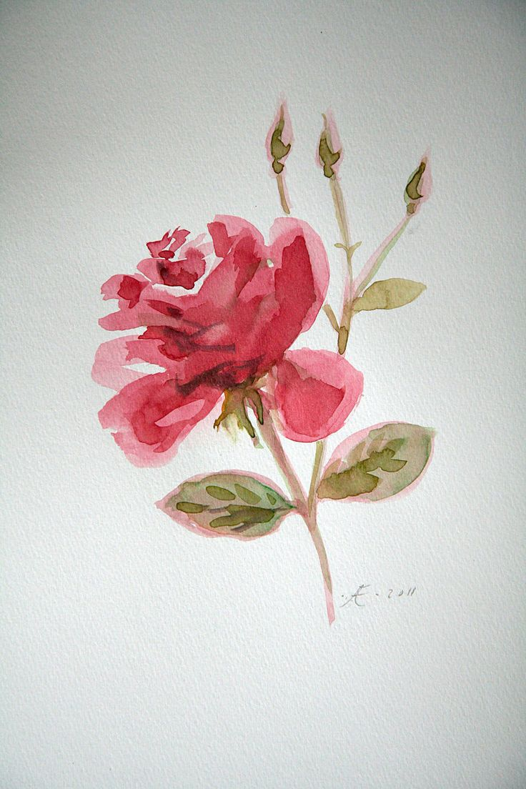 The 663 best Watercolor flowers images on Pinterest | Watercolour ...