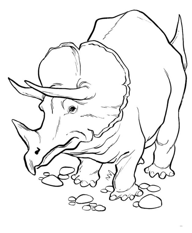 Triceratops Dinosaur Looking Eating Coloring Pages For Kids Printable Dinosaurs