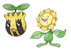 "Pokemon: Sunkern/Sunflora. Type: Grass. Used in: HeartGold (evolves into Sunflora with a Sun Stone). How obtained: Captured National Park. Gender: Female. Ability: Chlorophyll. Nickname: Chrysanta (English shortened from Greek 'chrysanthemum', meaning ""golden flower""). Starting level: 10."