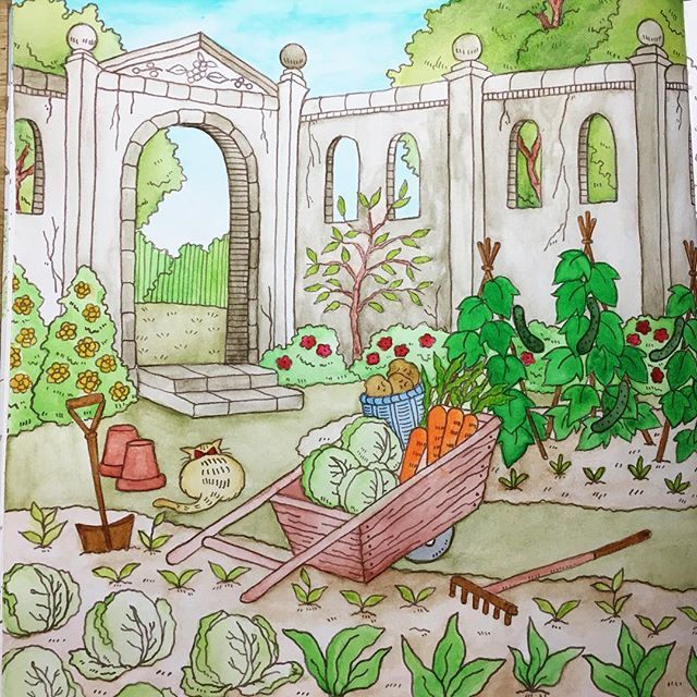 255 Best Images About Romantic Country Coloring Book On