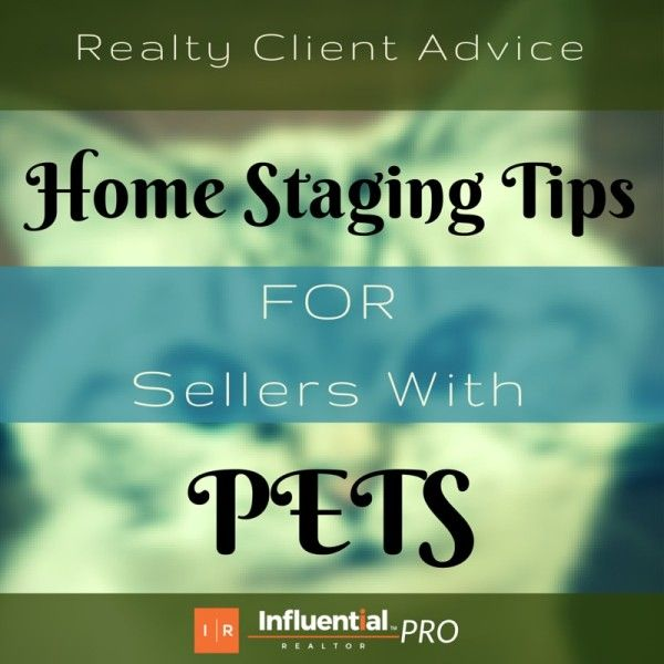 Home Staging Tips for Sellers with Pets. My latest at Influential Realtor Blog helps Real Estate Professionals lend helpful tips to their sellers.  #realestate #pets #sellers #tips #home #staging