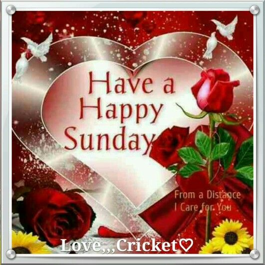 Good Morning Sister And All, Have A Happy Sunday, God
