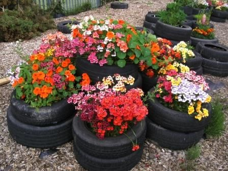 tires planted with insect attracting plants