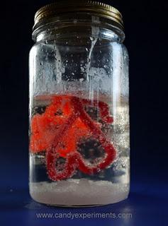 Experimentem amb cristalls de sucre