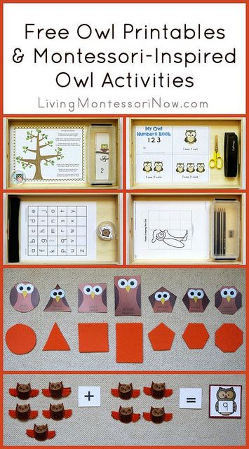 Long list of free owl printables plus ideas for using printables to create Montessori-inspired owl activities for preschoolers through first graders