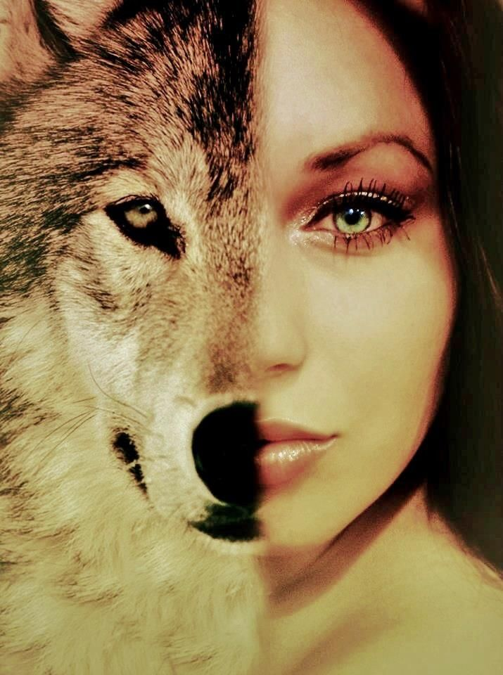 Как сделать свое фото с картинкой волка