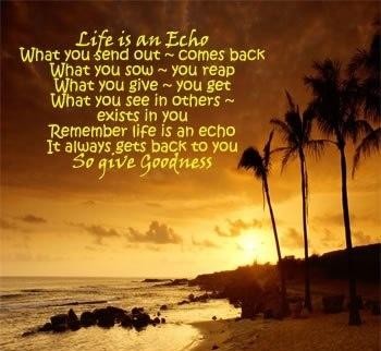 life is like an echo essay writer