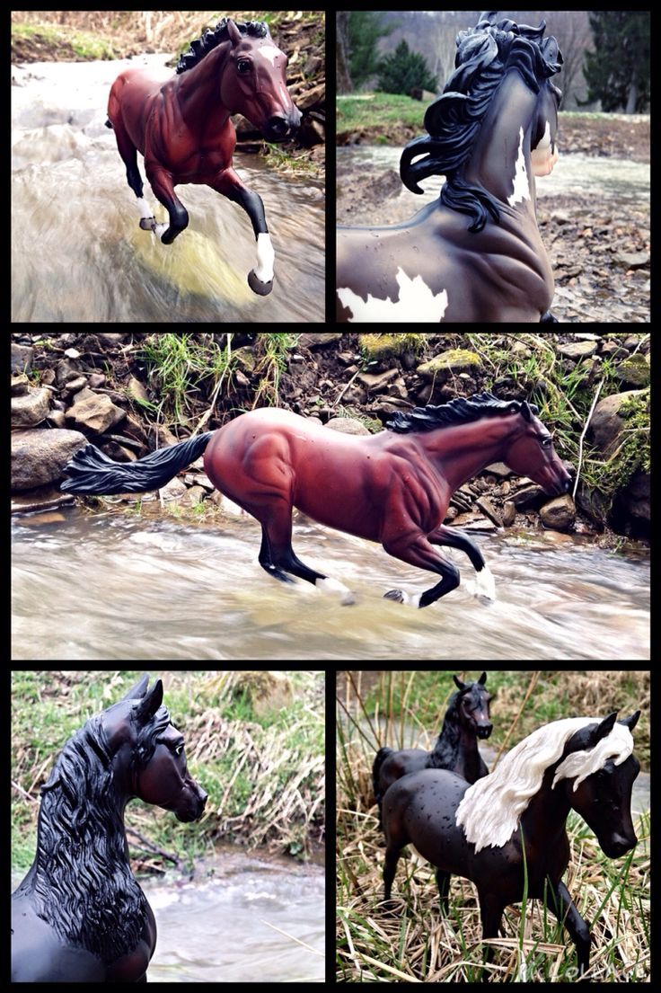 Breyer horse photography