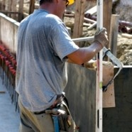 Heat illness prevention tips for outdoor workers. http://www.puresafety.com/public/workingwell/?p=2604#