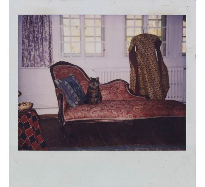 31 best images about balthus on pinterest portrait nyc for Balthasar floors