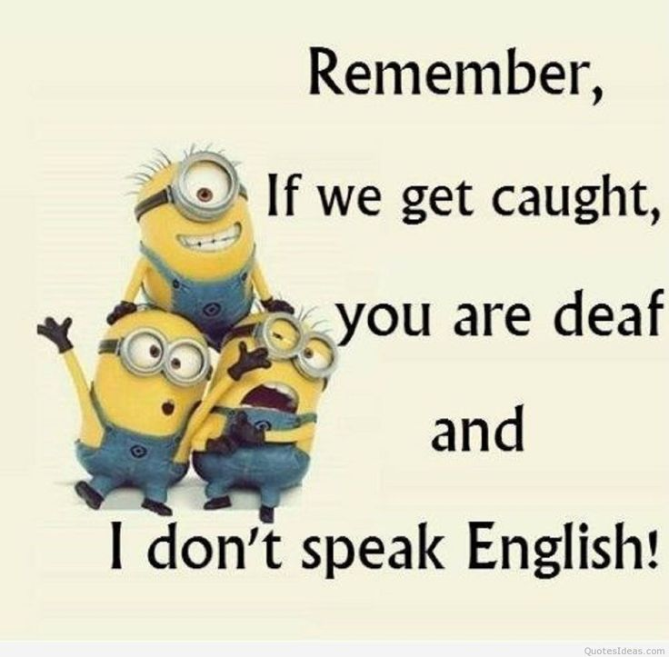 Funny Minions | Funny Minions Cartoons Quotes On Images