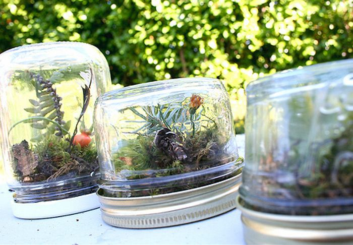 DIY: 10 Amazing Homemade Terrariums That Make Perfect Holiday Gifts! | Inhabitat - Green Design, Innovation, Architecture, Green Building