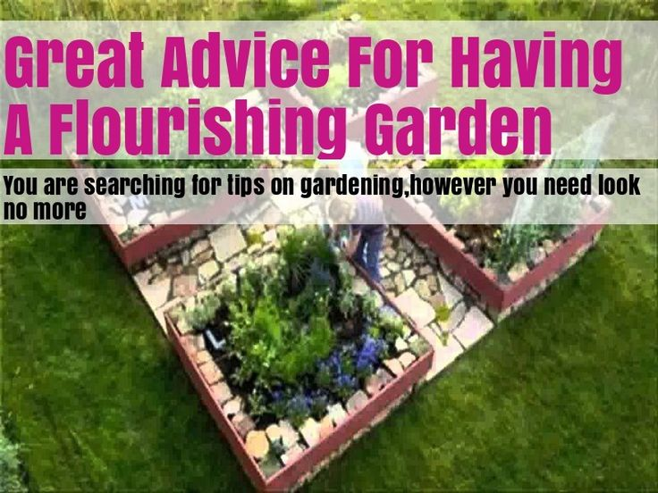 Helpful Advice And Tips On Organic Gardening - Gardening Activities