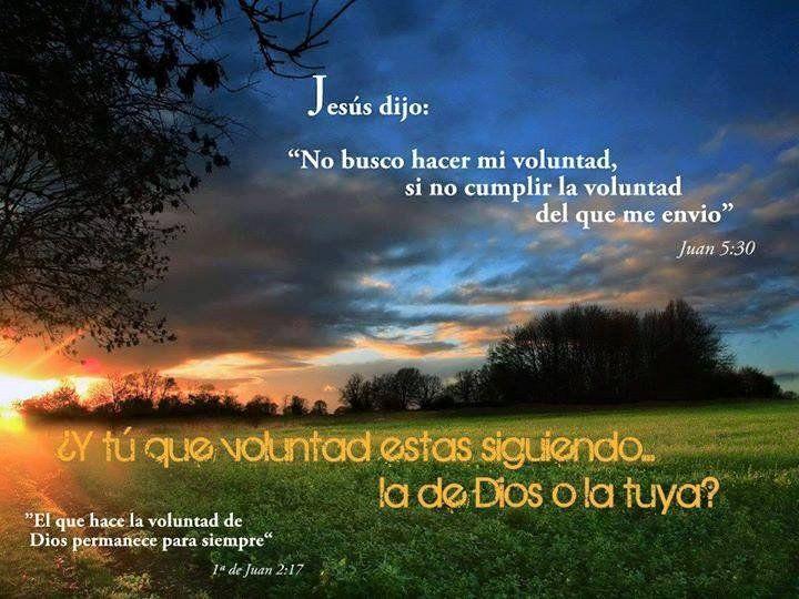 """Jesús dijo: """"No busco hacer mi voluntad si no cumplir la voluntad del que me envió"""" Jn 5,30 ¿Y tu que voluntad estas siguiendo... la de Dios o la tuya?"""