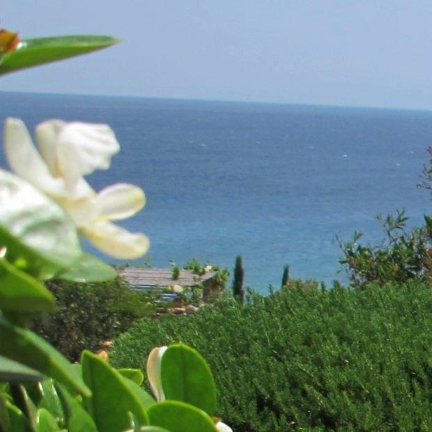 "awesome PAROS Makria Miti : Greek Island Luxury Destination... Elegance , [br]  [caption id=""attachment_15117"" align=""aligncenter"" width=""640""] The View, Makria Miti, Paros[/caption]  [caption id=""attachment_15105"" align... ,  #fashionblog #FashionBlogger #Greekdecor #Greekfashionblogger #GreekIsland #InteriordecorationGreekislandstyle #luxuryhouserentGreekIsland #LuxuryVacation #LuxuryVillas #NinaPapaioannou #Paros #rentluxuryvilla"