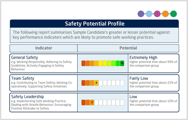 Operational Strengths - Safety Potential Profile - Reports show - safety report sample
