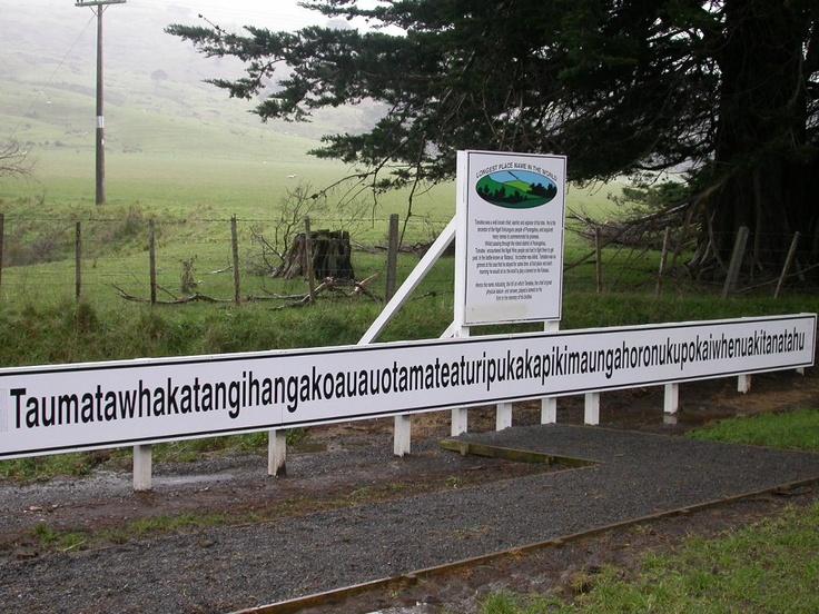 "There's a hill in New Zealand called  ""Taumatawhakatangihangakoauauotamateaturipukakapikimaungahoronukupokaiwhenuakitanatahu""    which translates to ""The summit where Tamatea, the man with the big knees, the climber of mountains, the land-swallower who travelled about, played his nose flute to his loved one."""