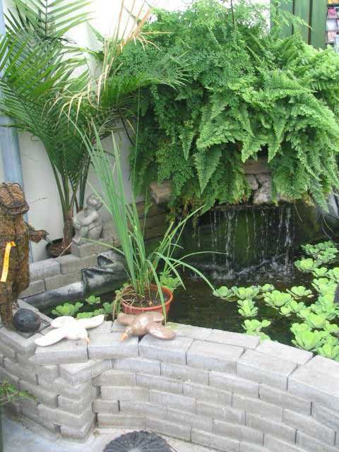 1000 ideas about indoor pond on pinterest koi fish pond for Indoor fish pond design