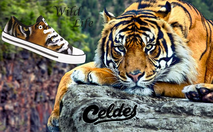 Fill your life with #adventures not things Explore the wild life at: http://celdes.com/all/397-iger.html #exploreceldes #exploretheworld #wildlife