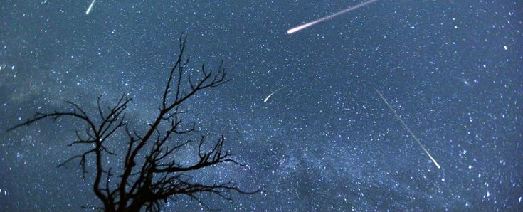 If you're as much of a sucker for a good sky-watching event as we are, you're not gonna want to miss this year's Perseid meteor shower.