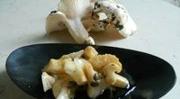 Opentaste - Mushrooms, what a passion!