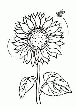 Flower Coloring Pages For Kids Prinable Free Of