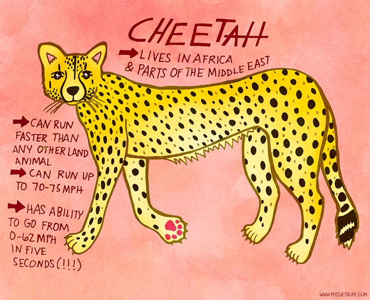 365 Days of Animals by My Zoetrope 052: Cheetah Pen/Ink/Digital