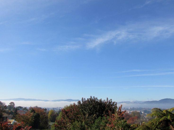 ロトルア湖の雲海