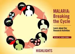 Malaria is a life-threatening disease caused by parasites that are transmitted to people through the bites of infected mosquitoes.  More at http://www.who.int/mediacentre/factsheets/fs094/en/