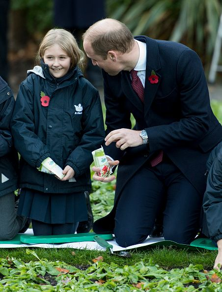 The Royal Watcher: The Duke of Cambridge made a visit to the Living Memory And Centenary Fields Projects at  Kensington Memorial Park on November 10.