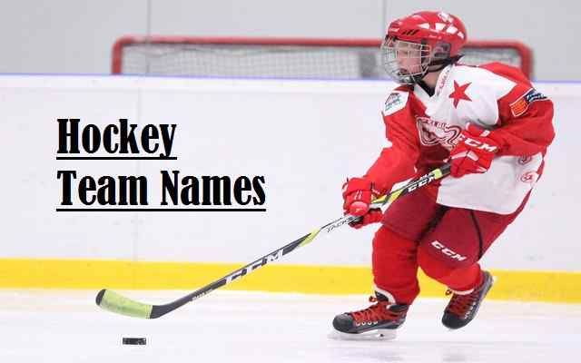 Hockey Team Names For Funny Cool Ideas Best And Fantasy Hockey Team Names Fantasy Hockey Team Names