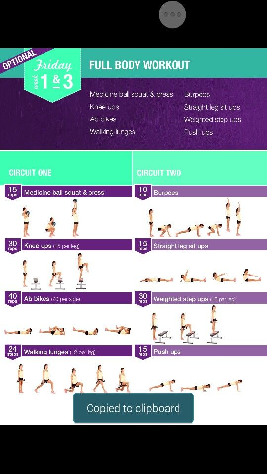 Wks 1&3 full body work out