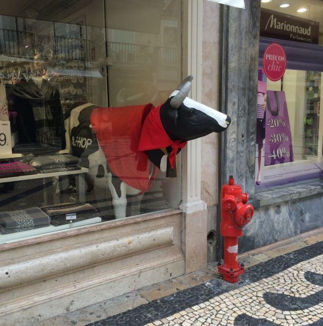 120+ фото Фееричные витрины магазинов - Лондон, Париж, Нью-Йорк http://happymodern.ru/vitriny-magazinov-46-foto-oformlenie-kotoroe-privlekaet/ Оригинальная забавная витрина с коровой, приглашающей заглянуть в магазин
