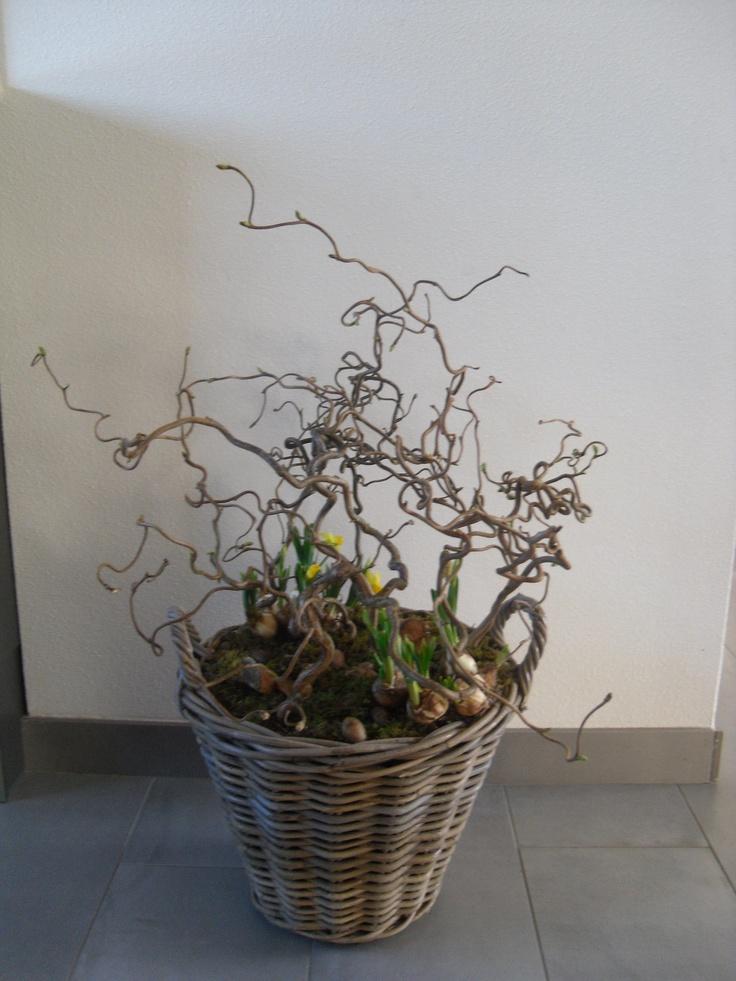 een wilgenmand volgestopt met oase hazelaartakken erin een paar voorjaarsbloemen en de rest opvullen met oase