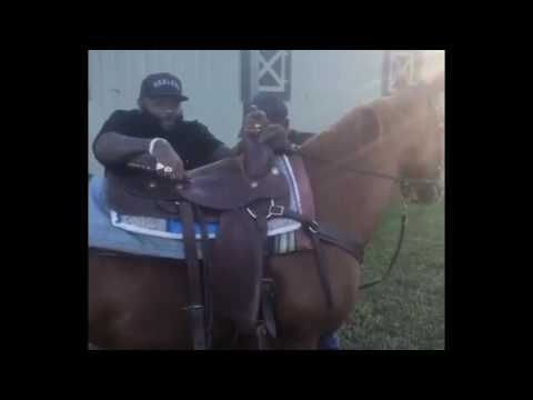 Rick Ross attempting to hop on to a horse (the funniest thing you'll eve...